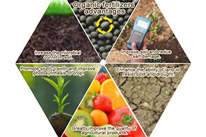 The benefits of using organic fertilizer