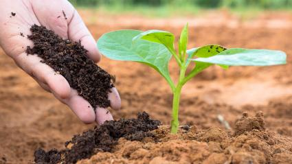 Why is the organic fertilizer equipment popular in the market